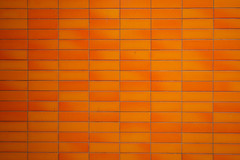 orange wall (Orrin) Tags: orange color wall tile lenstagged intense tiles 1022mm colorfield canonefs1022mmf3545usm 0xce5e0c