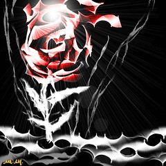 WhiteBlack_139b (Master Mason) Tags: flowers red bw white black flower color art colors rose dark painting psp arte darkness artistic surrealism rosa surreal paintshoppro fiori fiore rosso surrealistic bianco nero manray context surrealismo whiteblack mastermason lanouvellerevolutionsurrealiste