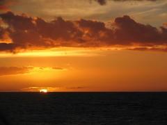 IMG_2605 (Dan F.) Tags: hawaii napalicoast bluedolphin kauai