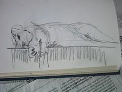 Leeuwtje heeft het warm (simongroenewolt) Tags: animal sketch drawing lion dier artis tekening leeuw schets