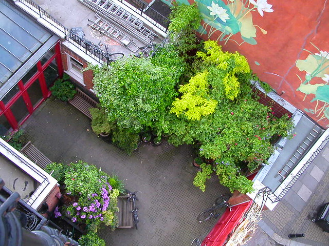 LBC courtyard from above