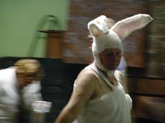 Female bunny