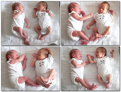 do the happy happy dance ( - s  ) Tags: two baby kids children happy dance twins babies kinderen babys karel twee madelief tweeling vierluik quadruptych