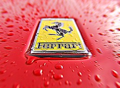 Wet Horse (Best view large) (steve_steady64) Tags: red italy horse cars car speed italia ferrari folgarida themered stevegatto stevegatto stevegattofolgarida extremedesign