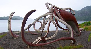 Giant Squid, Glover's Harbour
