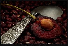 Ancient Teaspoon & the Organics (ReyGay) Tags: ancient organics teaspoon helluva ccmpmmm p1f1