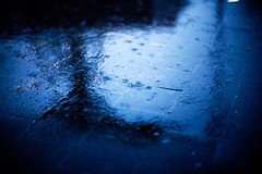 getting wet with rain (moaan) Tags: blue abstract rain 50mm parkinglot dof bokeh ground 2006 f10 noctilux meditation zeissikon rvp fujivelvia explored fujirvp twtmeblogged gettyimagesjapanq1 gettyimagesjapanq2