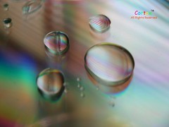 Drop A Step (Cotex) Tags: birthday macro happy drops rainbow colours cd drop step disc cortex happybirthdaytoyou 3333v33f 30faves30comments300views