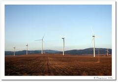 Molinos (Flaquivurus) Tags: sky espaa mill spain windmills energaelica cielo windturbine molinos tarifa windpower renewableenergy eolic elica energarenovable