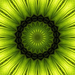 Soozika's palm frond (Bill Brown) Tags: kaleidoscope mandala kaleidoscopes soozika kaleidoscopesonly