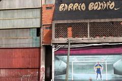barrio bonito (thbj) Tags: argentina buenosaires laboca bocajuniors carlostvez thbj wwwthbjphotocom
