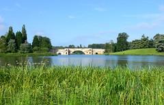 Grand Serenity (Bobby8) Tags: uk bridge england lake topv111 geese britain postcard unesco worldheritagesite serenity idyllic oxfordshire tranquil blenheimpalace capabilitybrown johnvanbrugh panasonicfz30