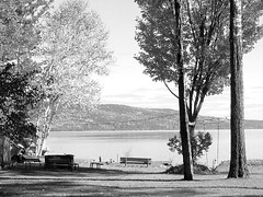 More Swings and a Bench (kategottli) Tags: ottawa ottawariver stonecliffe