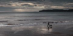 Walking the Dog (Martyn.A.Smith) Tags: seascape colour beach seaside sand water reflection waves person dog clouds outdoors fujifilm xti sidmouth devon englanduk