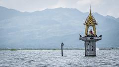 Cormorant pagoda (Channed) Tags: asia azië birma burma inlaylake inlelake myanmar shan myanmarbirma temple tempel pagoda aalscholver cormorant bird animal water lake meer channedimages chantalnederstigt