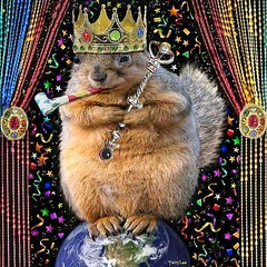 Happy New Year, Planet Earth (Terry_Lea) Tags: party squirrel squirrels celebration abigfave 2007newyear