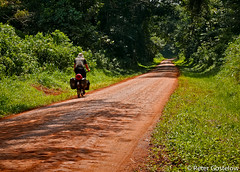 Through Budongo Forest Reserve (Peter Gostelow) Tags: africa forest cyclist uganda