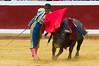 DSC_9152.jpg (josi unanue) Tags: animal blood spain bull arena bullfighter sansebastian esp toro traje asta sangre espada bullring unanue guipuzcoa matador torero tauromaquia sufrimiento cuerno banderilla banderilero