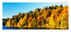 Couleurs d'automne - Lac la Crgut [Cantal] (BerColly) Tags: autumn trees lake france automne google flickr lac foliage arbres auvergne cantal feuillage cregut bercolly