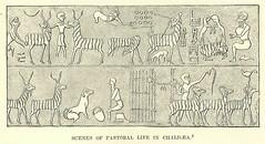 Anglų lietuvių žodynas. Žodis chaldean reiškia chaldėjų lietuviškai.