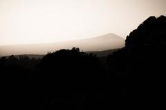 01 (YM. PI.) Tags: landscape shady ventoux