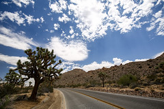 728A6960_FIX_red (Guestobal) Tags: california travel trees usa nature beautiful canon landscape us unitedstates joshuatree stunning nationalparks nationalgeographic statiuniti travelphotography joshuatreenp canoneos5dmkiii canonef1635mmf4isusm