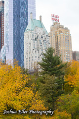 Essex House (Joshua Eller) Tags: nyc newyorkcity autumn ny fall architecture skyscrapper essexhouse