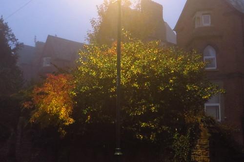 Nottingham evening fog, November 2015