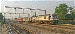 GZB WAP-7 (Abhishek Jog) Tags: sf from new bridge head delhi express taking ac hog charge generation towards capable on tilak accelerating ghaziabad gzb 22412 30406 tkj ndls anvt naharlagun wap7 ndlsnhln nhln