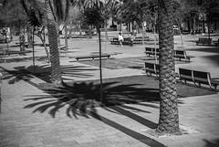 Le jardin (Marc Nikonis) Tags: barcelona city port spain stadt hafen espagne ville spanien barcelone barcelonabarcelonevillecityporthafenstadtespagne barcelonabarcelonevillecityporthafenstadtespagnespainspanien