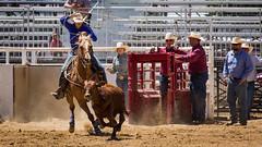Sarah.....     TMRA Junior Rodeo (Schoonmaker III) Tags: horse sarah barrels rodeo tehachapi roper juniorrodeo barrelracing calfroping barrelracer barrelhorse tmra tehachapimountianrodeoassociation