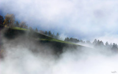 Mysteryland (VandenBerge Photography) Tags: travel trees sky mountain nature fog clouds canon skyscape schweiz switzerland europe mysterious lonelyplanet nationalgeographic berneseoberland fantasticnature cantonberne