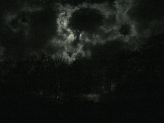 well, darkness, ain't it ? (achatphoenix) Tags: trees sky clouds dark noir darkness wolken ciel sombre nuit arbre dunkel dunkelheit darkest darker