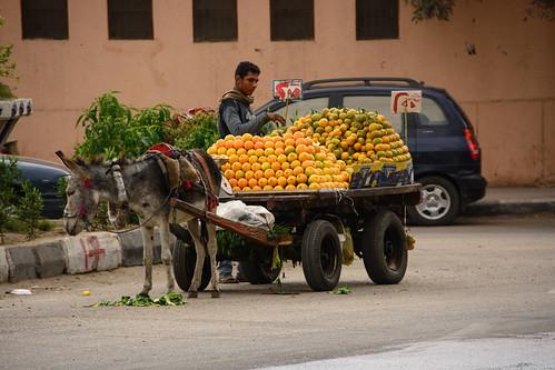 Cairo Abbassiyah Fruit