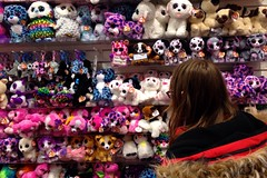 361:366 Wall of TY (amp'ed) Tags: tybeanieboos toys toy store 366the2016edition 3662016 day361366 26dec16