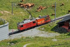 Rochers de Naye, 15th August 2016 (74009) Tags: rochersdenaye montreux switzerland narrowgauge goldenpass
