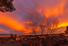 November Sunset (PuffinArt) Tags: sky céu yellow red sunset dramatic houses trees nikon d200 sigma 1020 vandamalvig puffinart