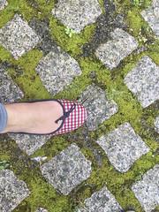 2016-06-06 15 48 17 (Pepe Fernández) Tags: iphone iphoneografía móvil fotoconmóvil fotoconiphone musgo pie calzado manoletina