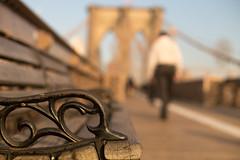 Brooklehscape (Nathalie Le Bris) Tags: brooklyn bokeh blur