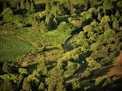 Find a HAPPY road. (France-♥) Tags: 1038 washingtonstate quote road forest forêt chemin route usa arbres trees green vert