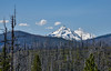 North Sister, Middle Sister, as viewed from the north (maytag97) Tags: sistersoregonarea maytag97 oregon cascade mountain range peak snow snowcap landscape sky cloud wilderness forest trees north sister middle
