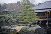Castle Garden in the Winter (asiantango) Tags: himeji himejicastle himejicastlegarden himejijou hyougo instagram item japan japanese kansairegion landscapes landscaping object out outdoor outdoors outside outsides snowy water weather 姫路市 関西地方