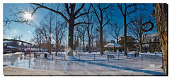 JANUARY 2017-020056-22 (Nick and Karen Munroe) Tags: gagepark skating skate zamboni sunset sunburst sparkle nikon nickandkarenmunroe nickmunroe nikond750 nickandkaren nikon1424f28 karenick23 karenick karenandnickmunroe karenmunroe karenandnick munroedesignsphotography munroedesigns munroephotography munroe beauty brampton beautiful brilliant ontario canada landscape weather ice snow winter trees frosty cold colour color