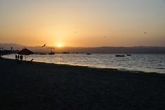 Paracas-117 (m.lencioni3) Tags: paracas peru perù quad ocean pacific pacifico oceano pellicano birds southamerica sony sonya7 fe35mmf28zazeisssonnart fe55mmf18zazeisssonnart konicaminolta1735mmf2845 tour travel trip gringotrail