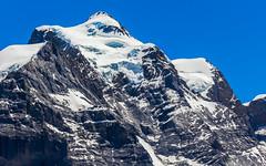 Jungfrau (4158 m) (Martin Štěpán) Tags: alps alpy hory léto mountains peak summer switzerland vrchol štít švýcarsko lauterbrunnen bern ch