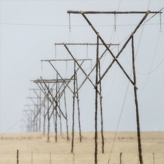 blistering heat (me*voilà) Tags: namibia powerlines desert heat cables masts
