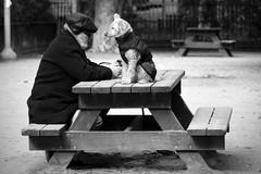 Bonding (Roi.C) Tags: dogs people street blackwhite sitting seated black white littledoglaughednoiret monochrome nikond5300 nikon nikkor outdoor candid telaviv dog blackandwhite bw