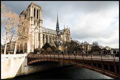 Notre-Dame-de-Paris et le Pont au Double (Jean-David & Anne-Laure) Tags: paris france nikon d800 zeiss 21mm seine river architecture bridge street streetphotography wideangle cathedral notredamedeparis