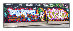 Street Art (The Rolling People), East London, England. (Joseph O'Malley64) Tags: therollingpeople trp snoe brie brk streetarr urbanart publicart graffiti eastlondon eastend london england uk britain british greatbritain art artists artistry artwork murals muralists wallmurals wall walls brickwork bricksmortar pointing condemnedbuilding gentrification creepinggentrification ghettocreation futureghettos whencouncilsgetitwrong lamppost concrete granitekerbing tarmac parkingbays parkingrestrictions urban urbanlandscape aerosol cans spray paint fujix accuracyprecision