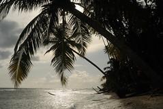 Against the sun (๑۩๑ V ๑۩๑) Tags: ocean sea sky cloud beach nature sumatra indonesia island asia southeastasia outdoor aceh indonesie sumatera singkil banyak indonézia tailana